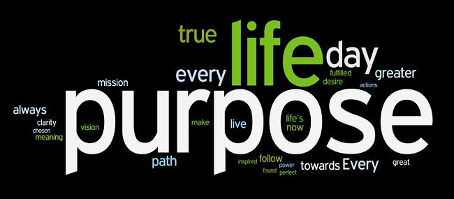 Life Lesson #3 - The Purpose in Purpose