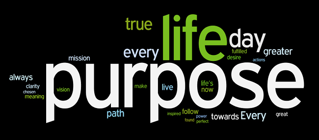 Life Lesson #3 - The Purpose in Purpose